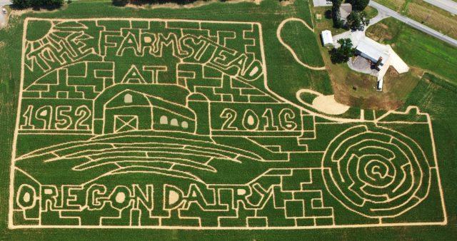 2016 Farmstead Corn Maze