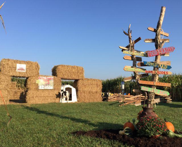 Corn Maze Signs