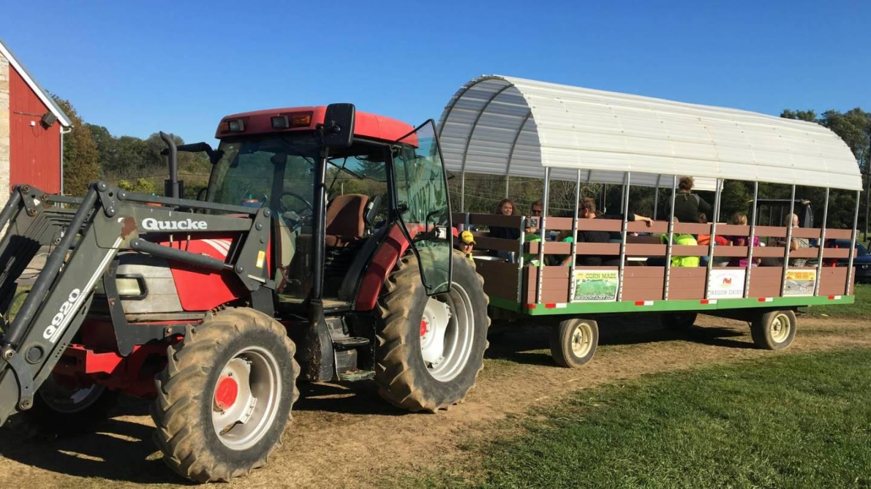 School/Farm Tours Family Fun | Oregon Dairy